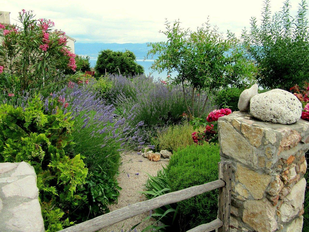 devis creation jardin mediterraneen