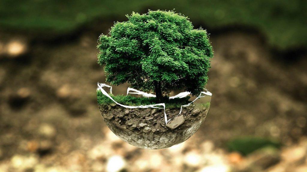 comment renover de maniere ecologique